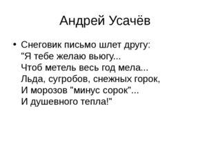 """Андрей Усачёв Снеговик письмо шлет другу: """"Я тебе желаю вьюгу... Чтоб метель"""