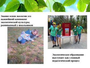 Знание основ экологии это важнейший компонент экологической культуры, развива