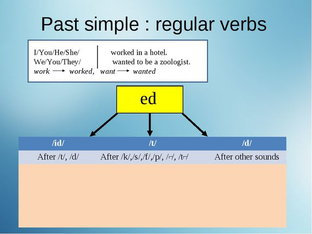 Past simple : regular verbs I/You/He/She/ worked in a hotel. We/You/They/ wan...