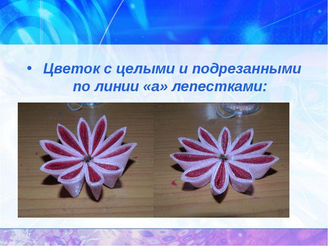 Цветок с целыми и подрезанными по линии «а» лепестками: