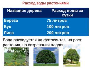 Расход воды растениями Вода расходуется на фотосинтез, на рост растения, на с