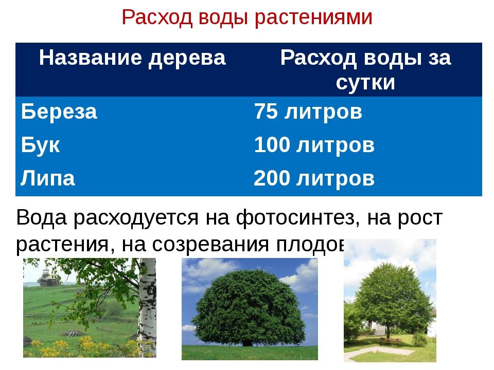 Расход воды растениями Вода расходуется на фотосинтез, на рост растения, на с...