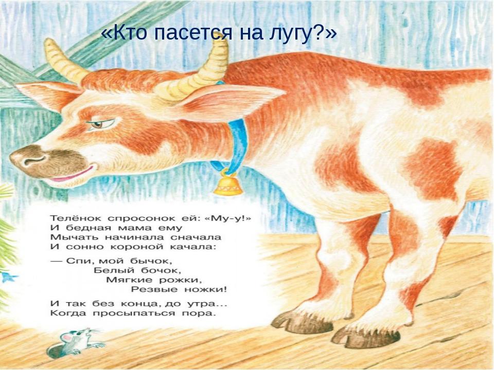 «Кто пасется на лугу?» Матюшкина А.В. http://nsportal.ru/user/33485