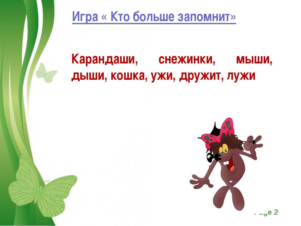 Игра « Кто больше запомнит» Карандаши, снежинки, мыши, дыши, кошка, ужи, друж...