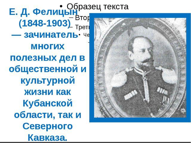 Е. Д. Фелицын (1848-1903) — зачинатель многих полезных дел в общественной и...