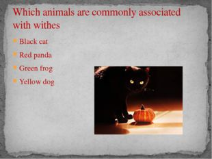 Which animals are commonly associated with withes Black cat Red panda Green f