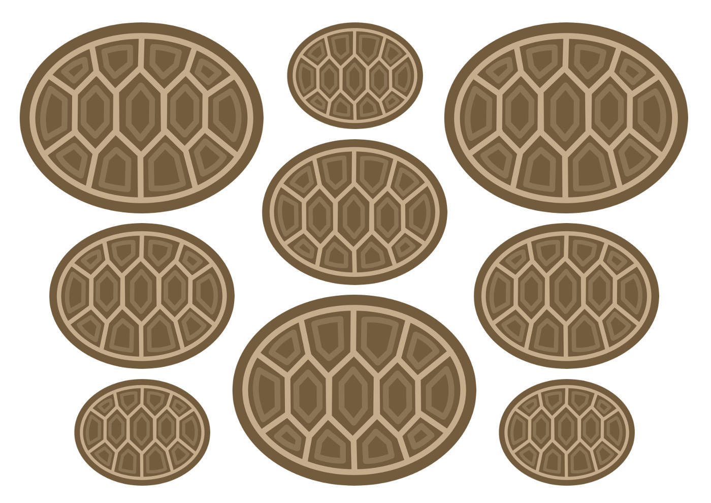 Панцири для черепах, рисунок
