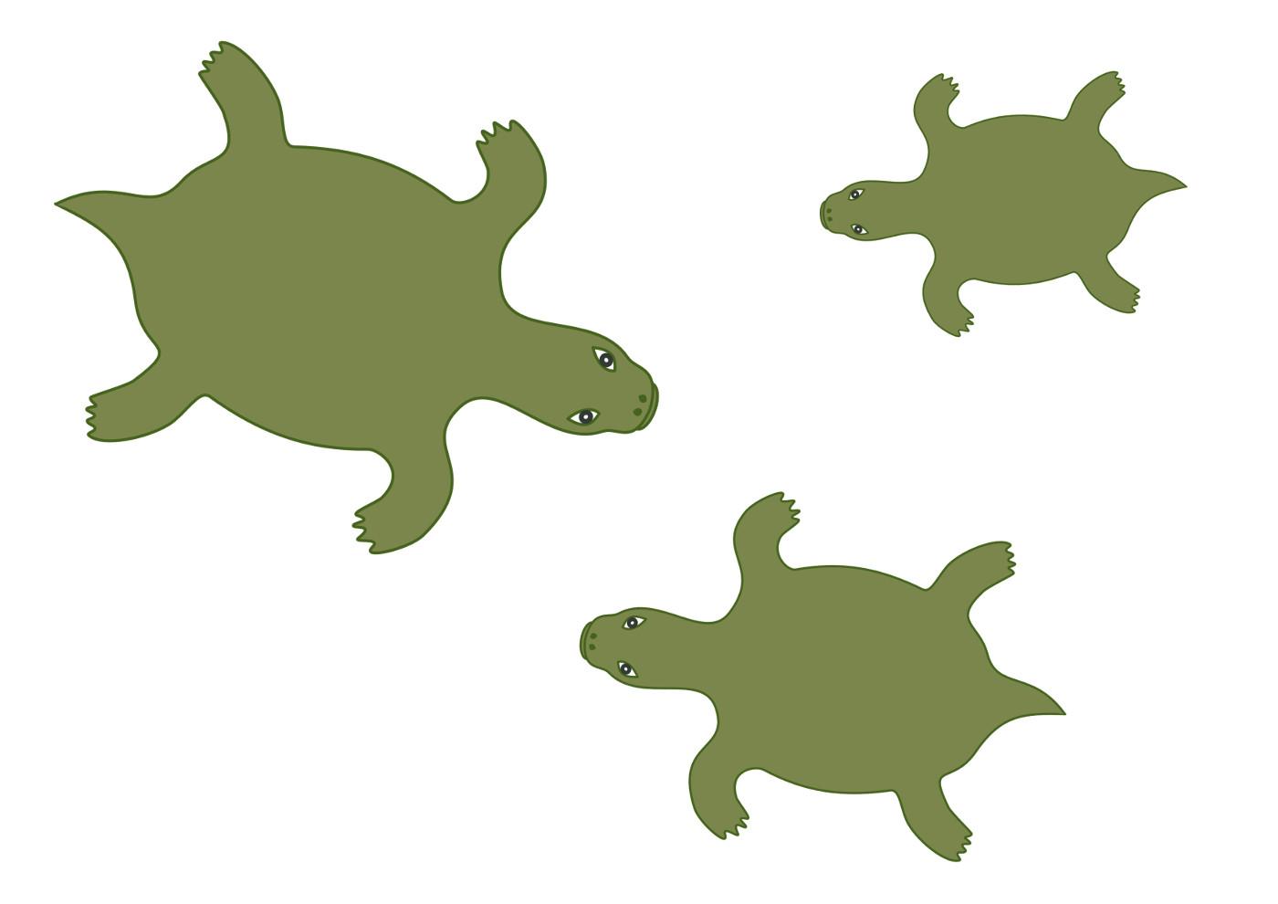 Черепахи без панциря, рисунок