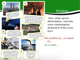 A D E Problems: litter, urban sprawl, deforestation, acid rain, water contami