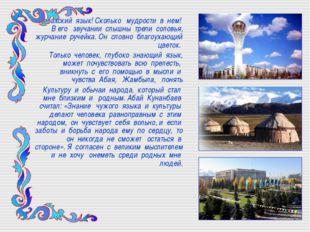 Казахский язык! Сколько мудрости в нем! В его звучании слышны трели соловья,