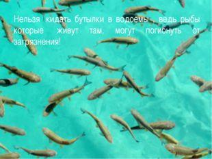 Нельзя кидать бутылки в водоемы , ведь рыбы которые живут там, могут погибн