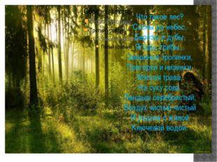 Что такое лес? Сосны до небес, Берёзы и дубы, Ягоды, грибы... Звериные тропи