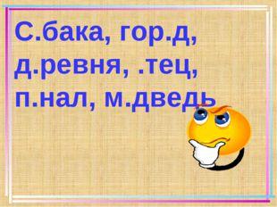 С.бака, гор.д, д.ревня, .тец, п.нал, м.дведь