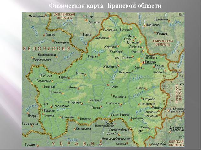 Физическая карта Брянской области