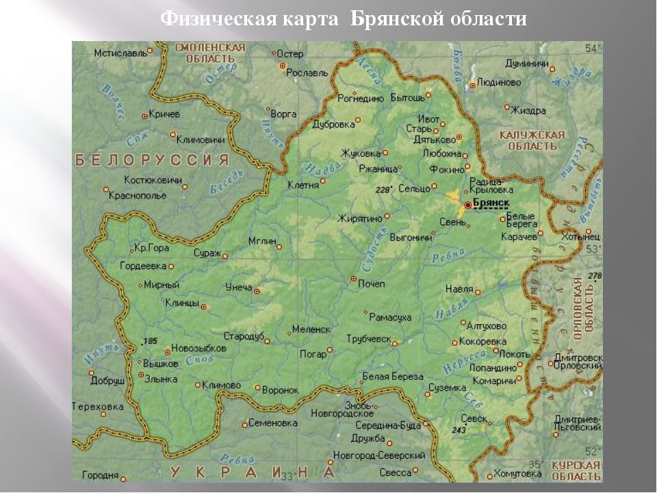 новом году погода в брянской обл используется территории