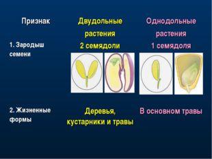 ПризнакДвудольные растенияОднодольные растения 1. Зародыш семени2 семядоли