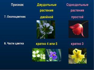 ПризнакДвудольные растенияОднодольные растения 7. Околоцветникдвойнойпрос