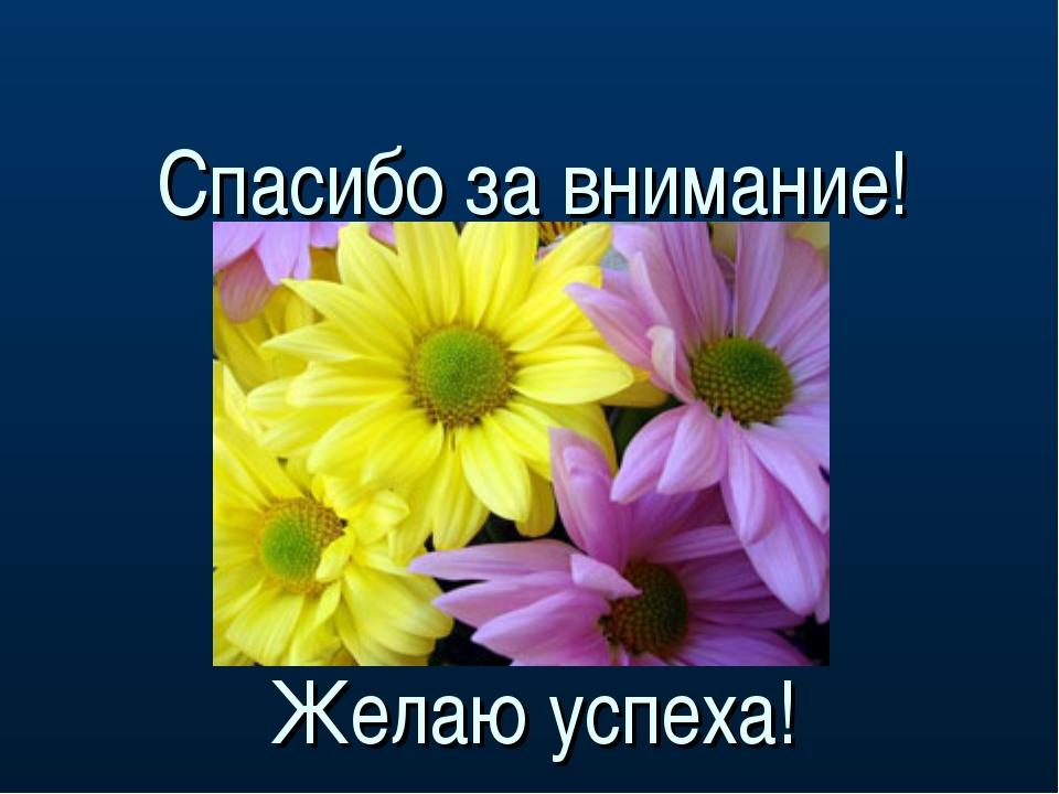 Спасибо за внимание! Желаю успеха!