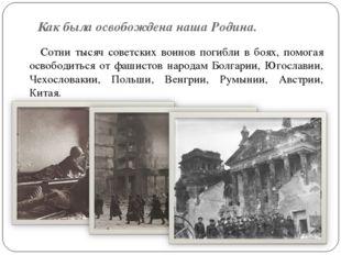 Как была освобождена наша Родина. Сотни тысяч советских воинов погибли в боях