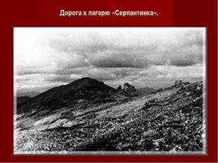 Дорога к лагерю «Серпантинка».