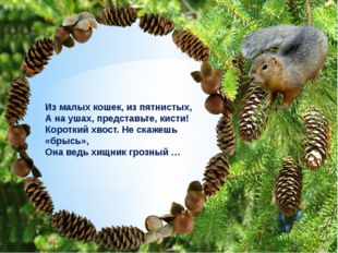 Не ломайте ветви деревьев и кустарников!