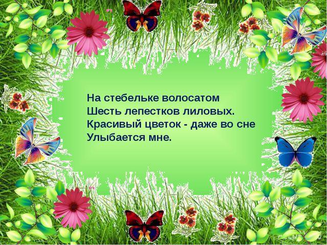 Колосится в поле рожь. Там, во ржи, цветок найдешь. Ярко – синий и пушистый,...