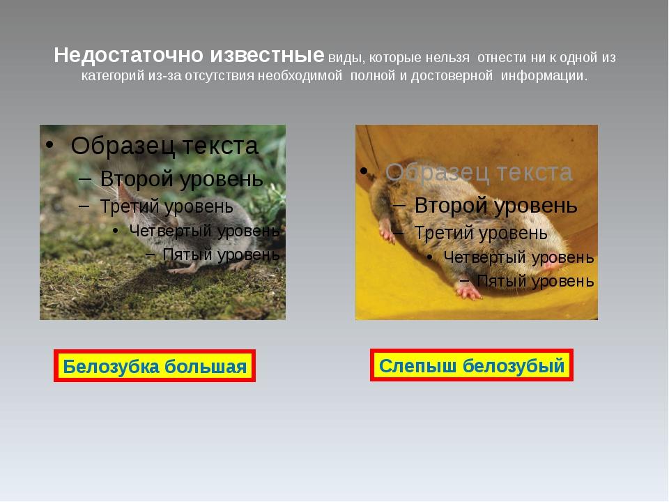Информация о видах, численность которых восстановлена и на данный момент нахо...