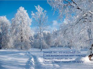 Зимний лес, это сказочный сон. В нем волшебностью веет повсюду. Тишиной очару