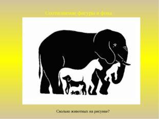 Соотношение фигуры и фона Сколько животных на рисунке?