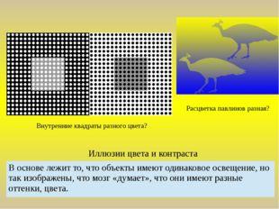 Иллюзии цвета и контраста Расцветка павлинов разная? Внутренние квадраты разн