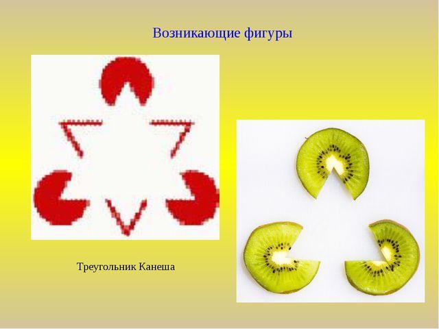 Возникающие фигуры Треугольник Канеша