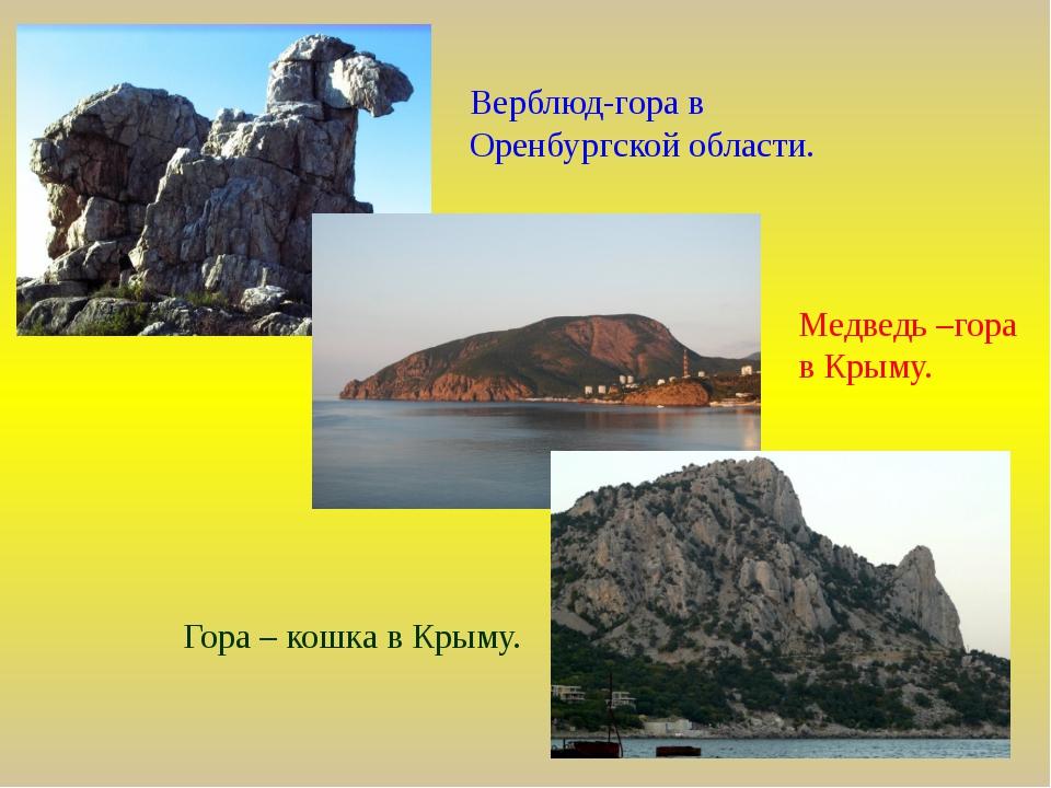 Верблюд-гора в Оренбургской области. Медведь –гора в Крыму. Гора – кошка в Кр...