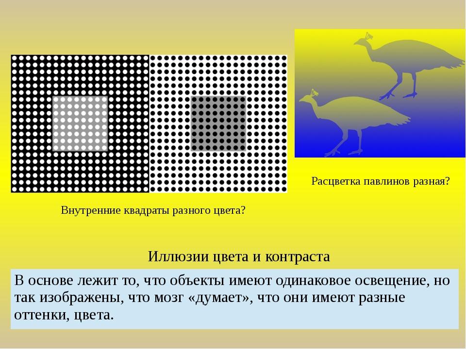 Иллюзии цвета и контраста Расцветка павлинов разная? Внутренние квадраты разн...