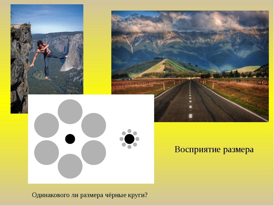 Восприятие размера Одинакового ли размера чёрные круги?