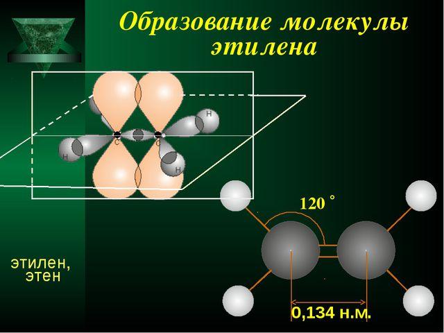 Образование молекулы этилена 0,134 н.м. этилен, этен 120 ˚