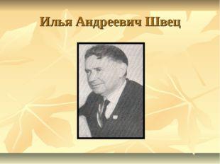 Илья Андреевич Швец