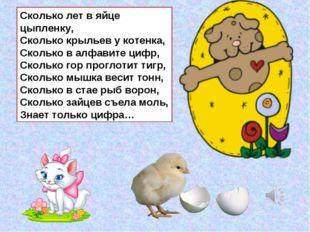 Сколько лет в яйце цыпленку, Сколько крыльев у котенка, Сколько в алфавите ци