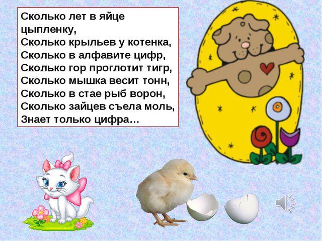 Сколько лет в яйце цыпленку, Сколько крыльев у котенка, Сколько в алфавите ци...
