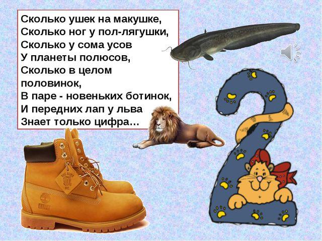 Сколько ушек на макушке, Сколько ног у пол-лягушки, Сколько у сома усов У пла...