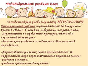 Соответствует учебному плану МБОУ ДСОШ№3 Коррекционная работа осуществляется