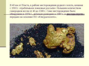 В 40 км от Пласта, в районе месторождения рудного золота, начиная с 1910 г. о