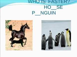 WHO IS FASTER? HO__SE P__NGUIN