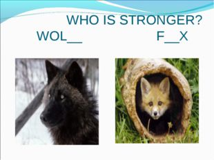 WHO IS STRONGER? WOL__ F__X