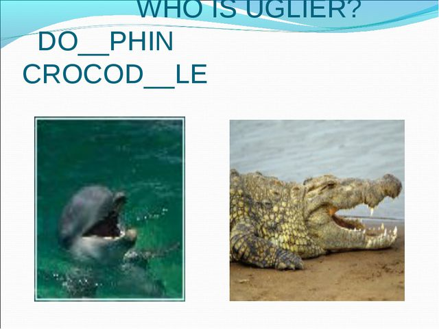 WHO IS UGLIER? DO__PHIN CROCOD__LE