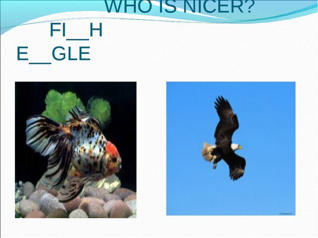 WHO IS NICER? FI__H E__GLE