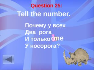 Question 29: Make the word combinations. dog / friendly a friendly dog duck /