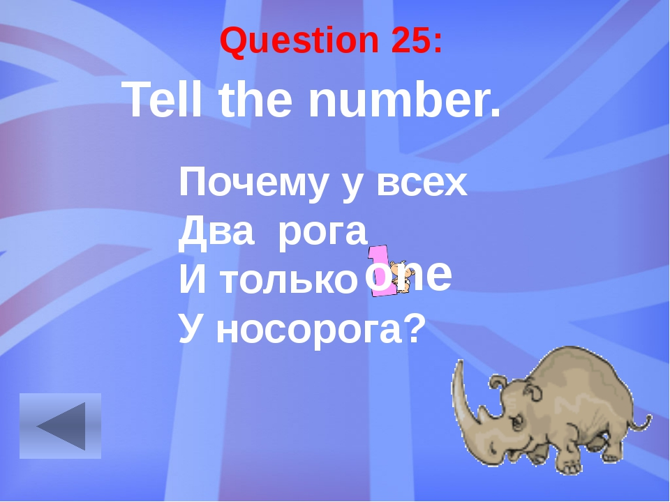 Question 29: Make the word combinations. dog / friendly a friendly dog duck /...