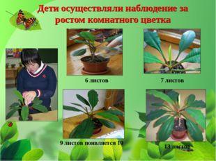 6 листов 7 листов 13 листов 9 листов появляется 10 Дети осуществляли наблюден