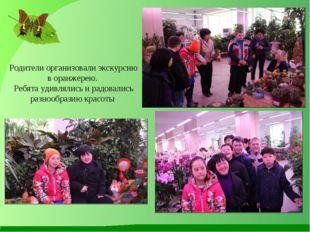 Родители организовали экскурсию в оранжерею. Ребята удивлялись и радовались р