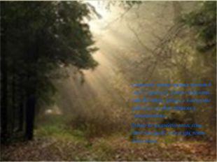 Слышишь, какая музыка гремит в лес? Слушая её, можно подумать, что все звери